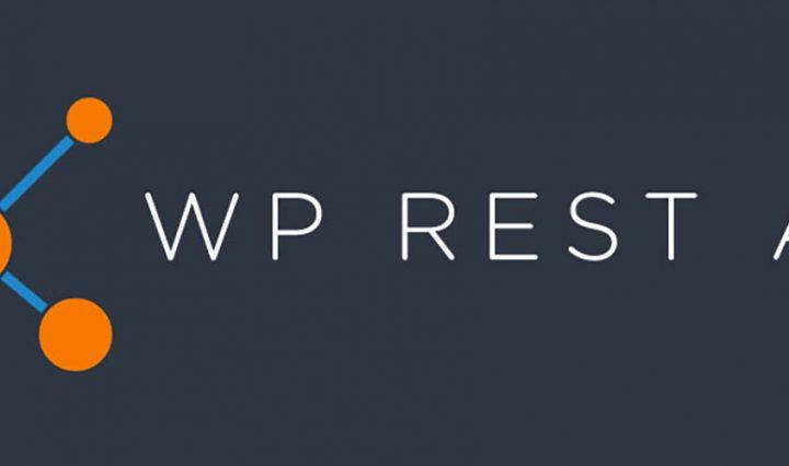 Protejer JSON REST API